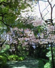 春の予感(^^ゞ
